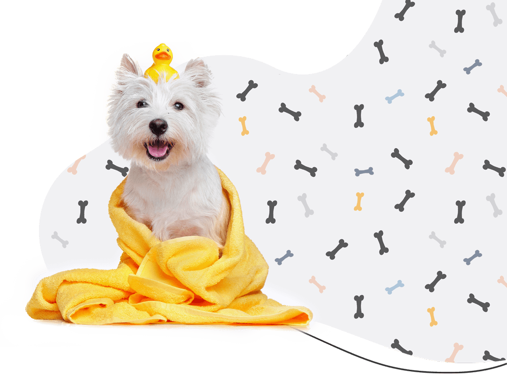 https://dev.furtheloveofdogs.com/wp-content/uploads/2019/08/hero_prices.png